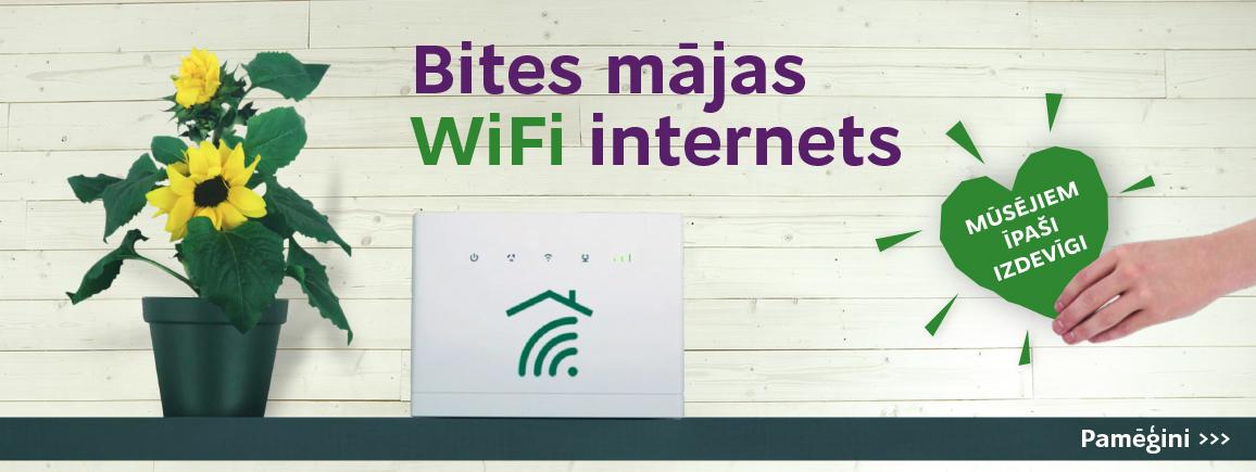 Interneta plani